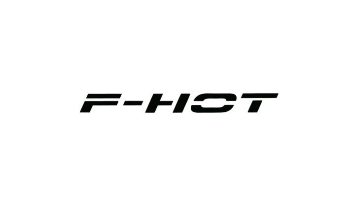 F-HOT_LOGO