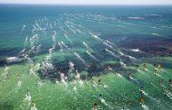 世界最大級の草レース in 西オーストラリア