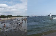 横浜海の公園:ウインドサーフィンと潮干狩り