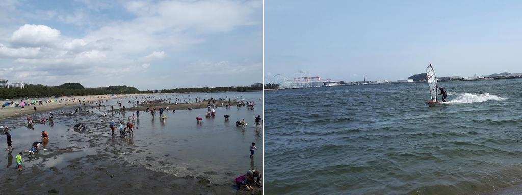 横浜海の公園:干潮時と満潮時、潮干狩りとウインドサーフィン